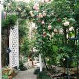 前庭のパーゴラ